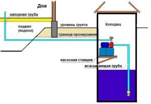 NS-v-kolodse-1